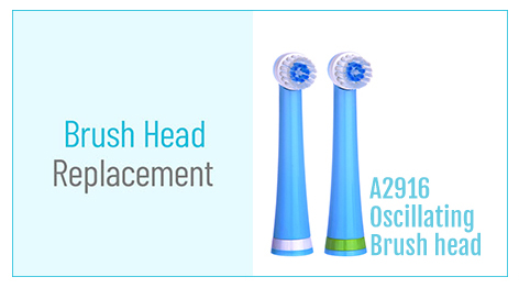 360 Replacement Toothbrush Head A2916